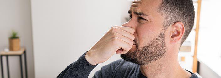 Geruch aus Raum entfernen